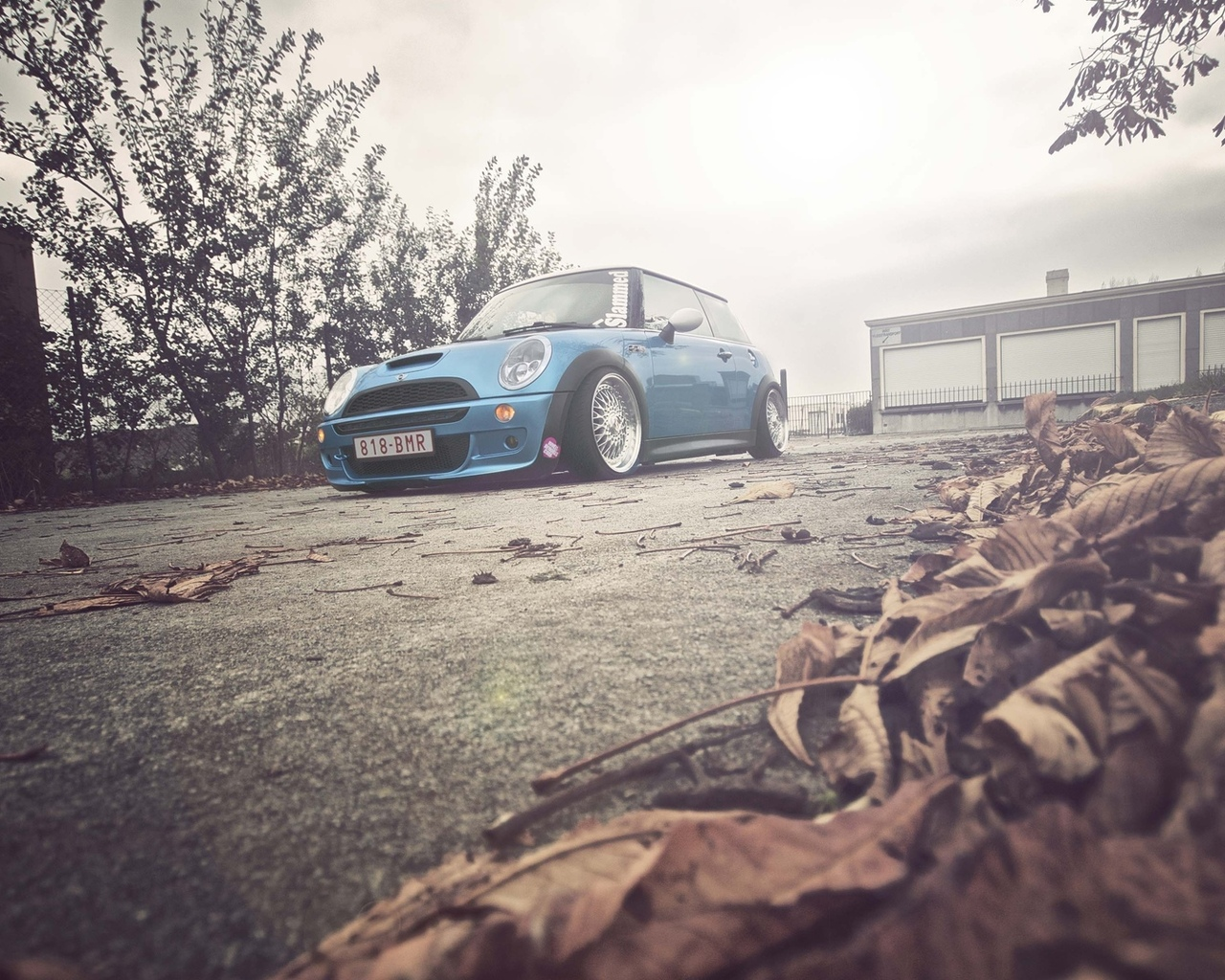 желтые, деревья, auto, wallpapers auto, cars, природа, листья, blue, city, mini cooper, осень