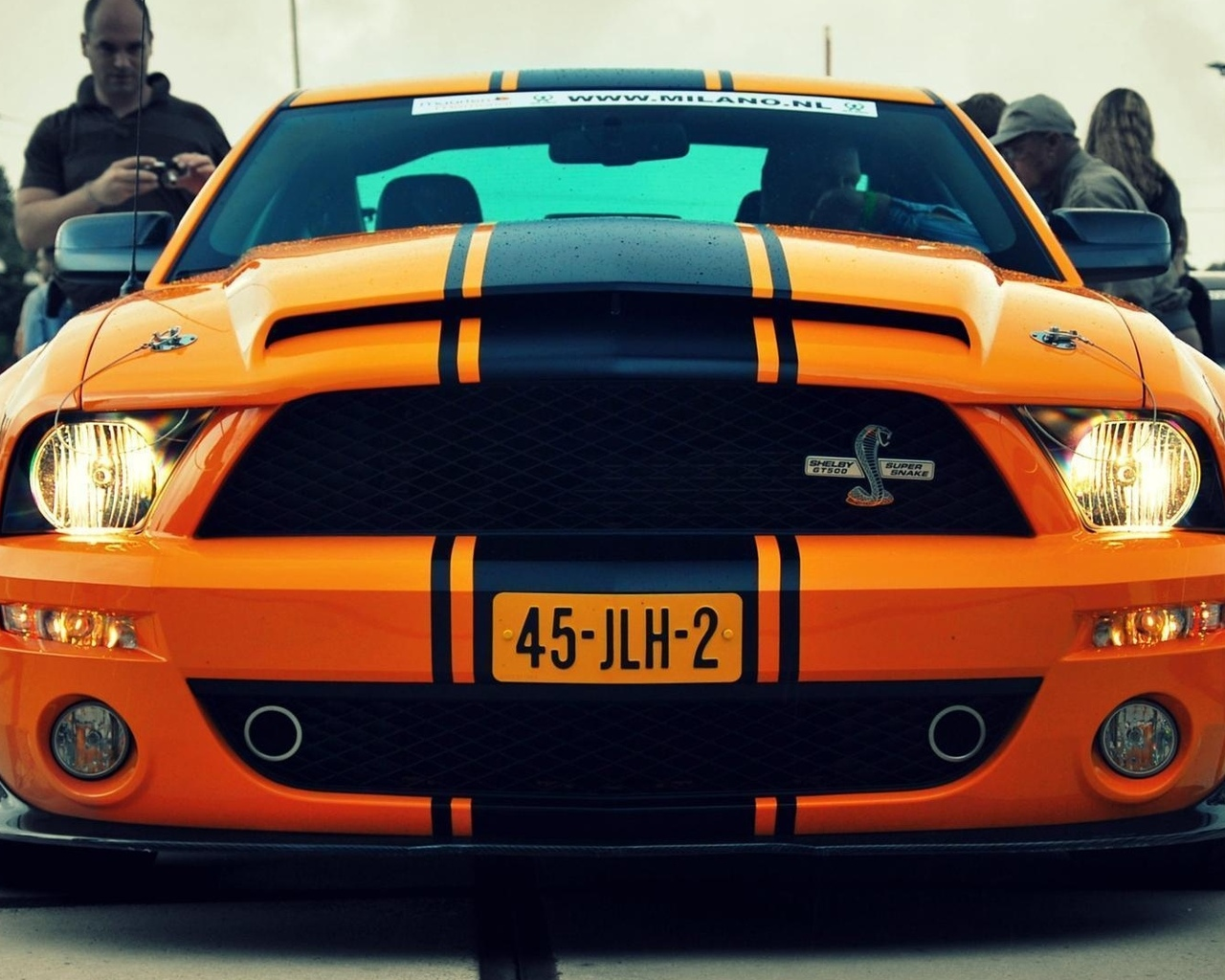 auto, ford, фото, shelby, cars, gt500