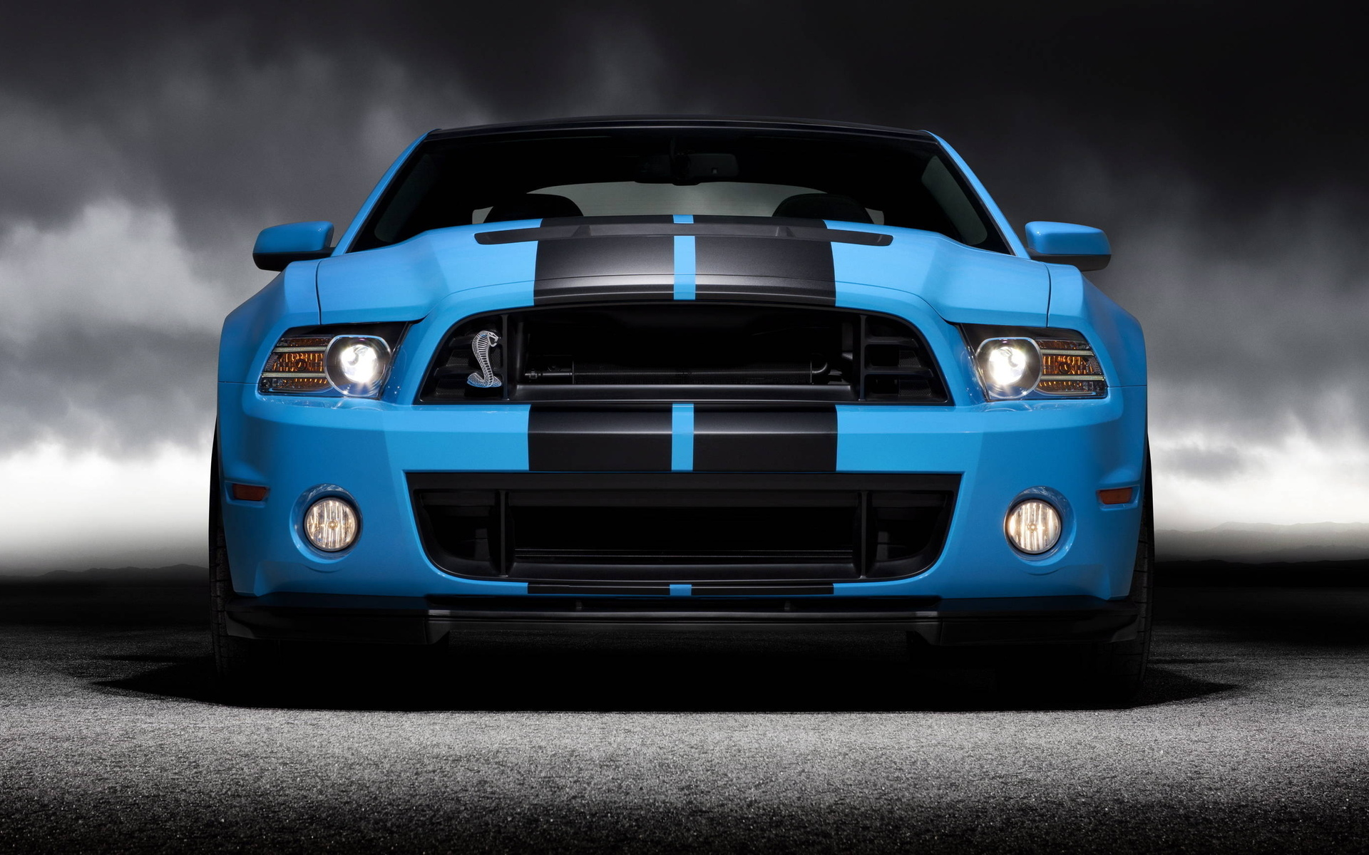 mustang, shelby, мустанг, форд, gt500, ford, cobra