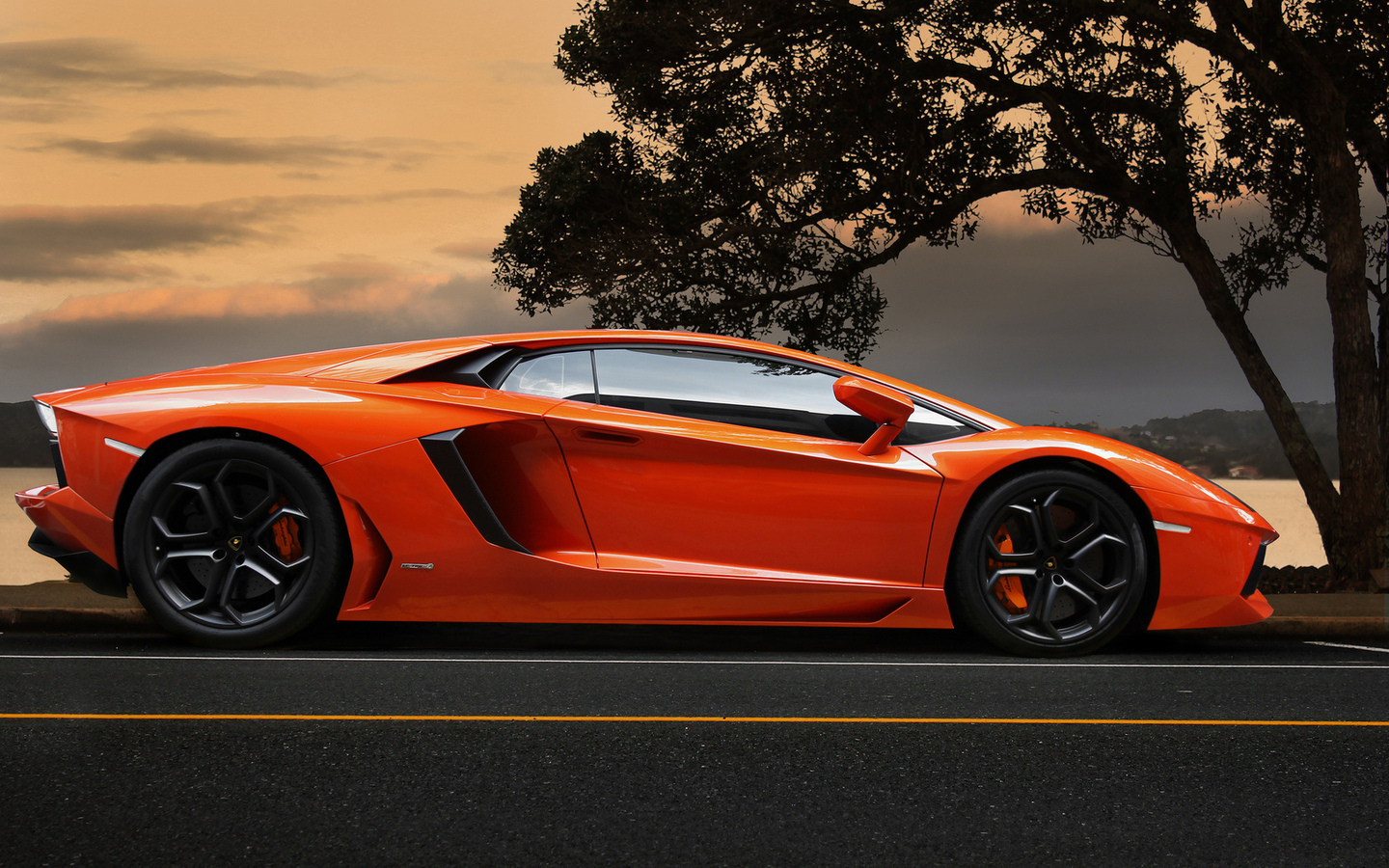 tree, aventador, ламборгини, lamborghini, supercar, orange, sky, lp700-4