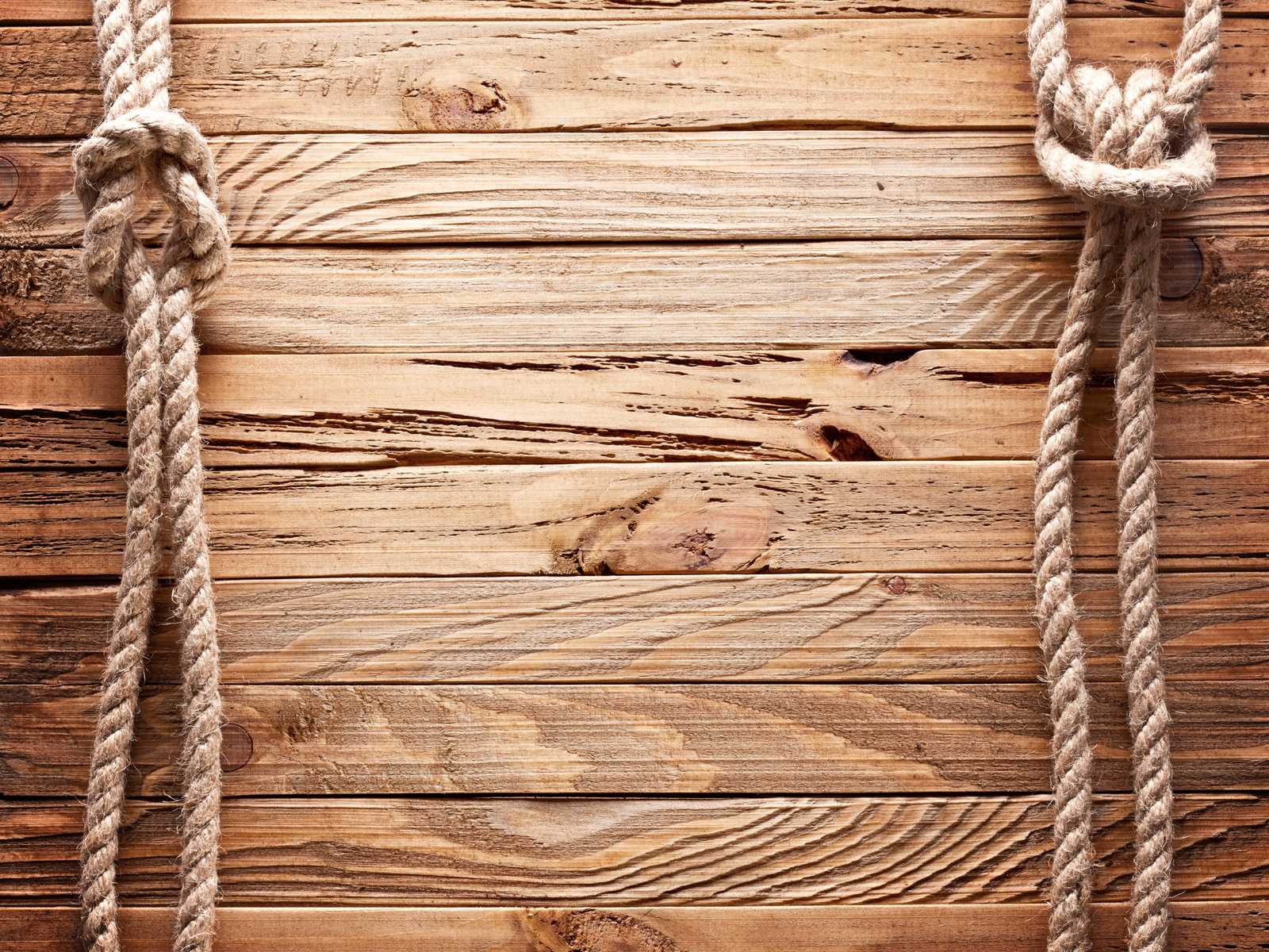 rope, wall, cord, brown, texture, line, halter, wood, fence, palisade