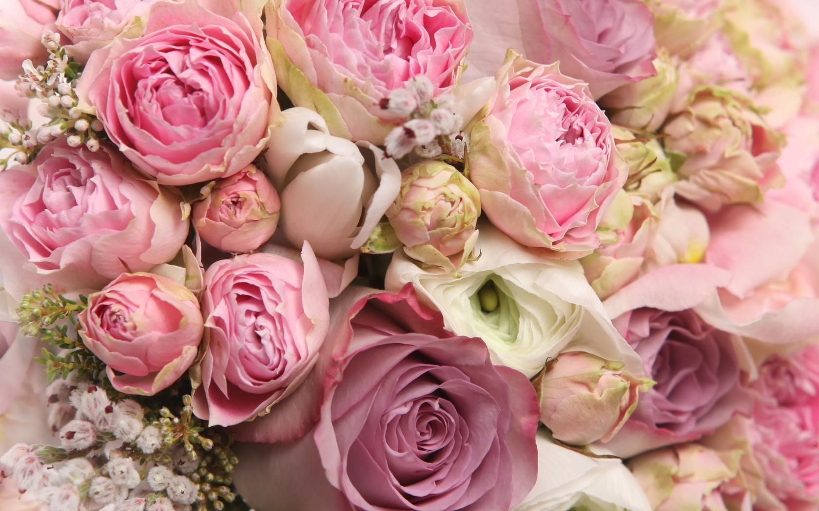 bouquet, flowers, pretty, cool, flower, lovely, rose, i love you, beautiful, nice, roses, beauty
