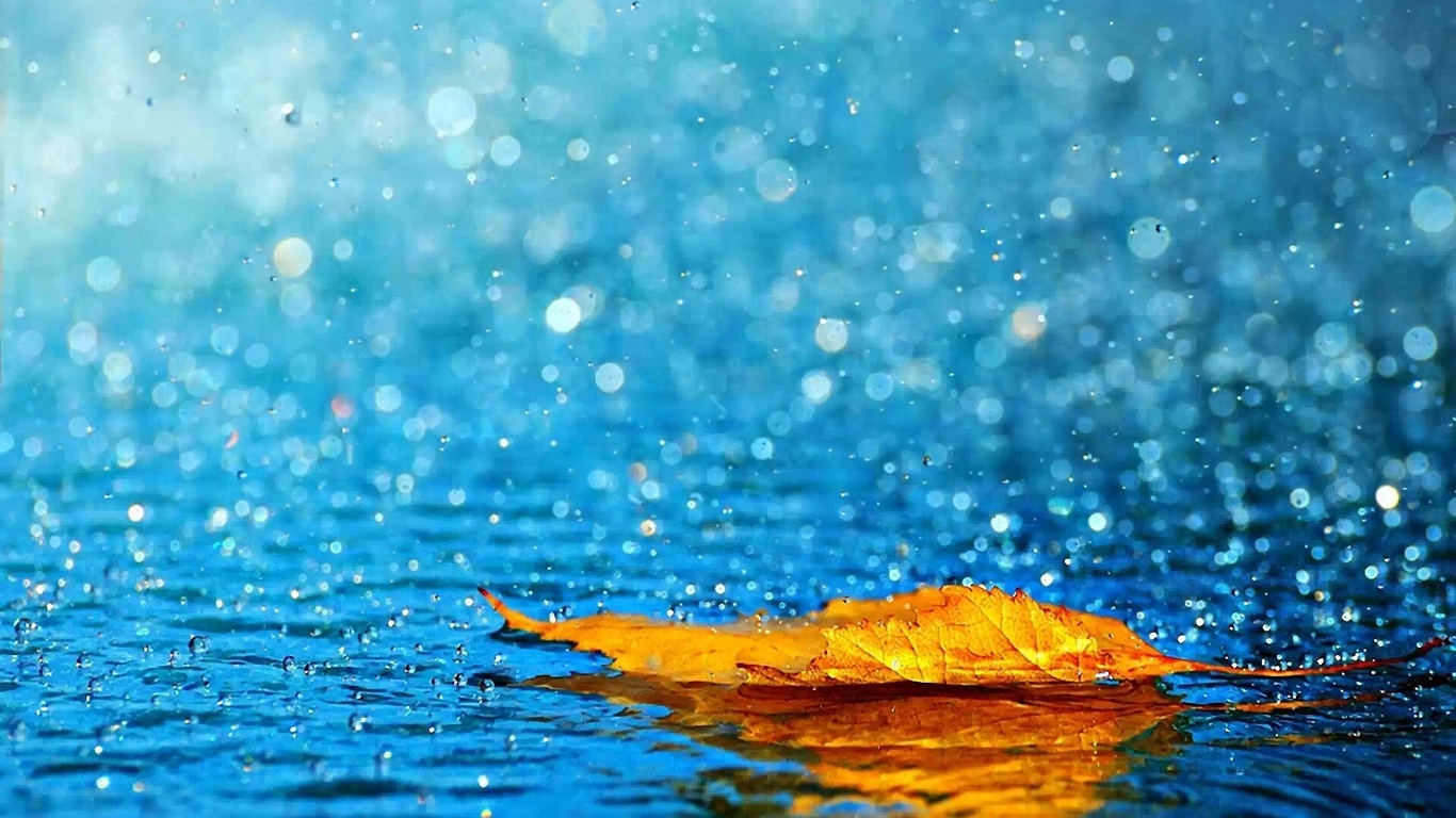 50 Beautiful Rain Wallpapers for your desktop  Webneelcom