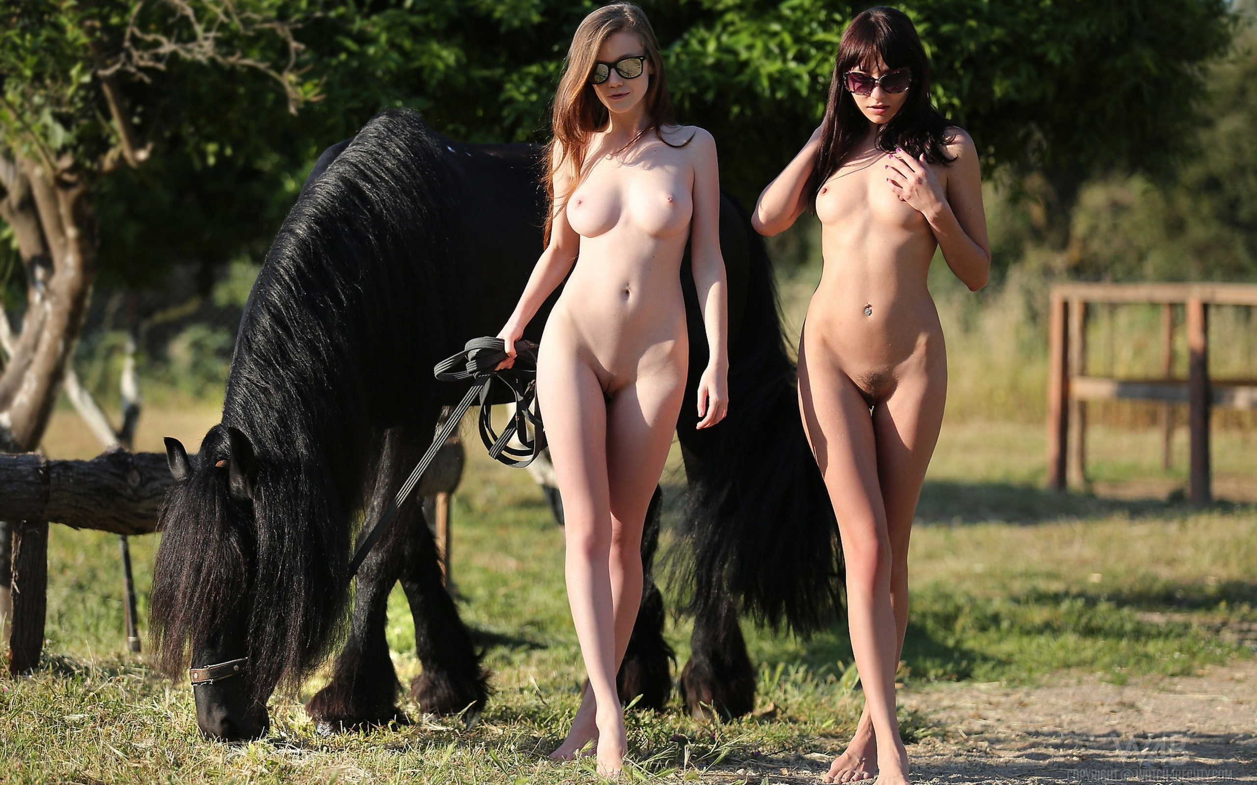 Naked girls newfoundland #14