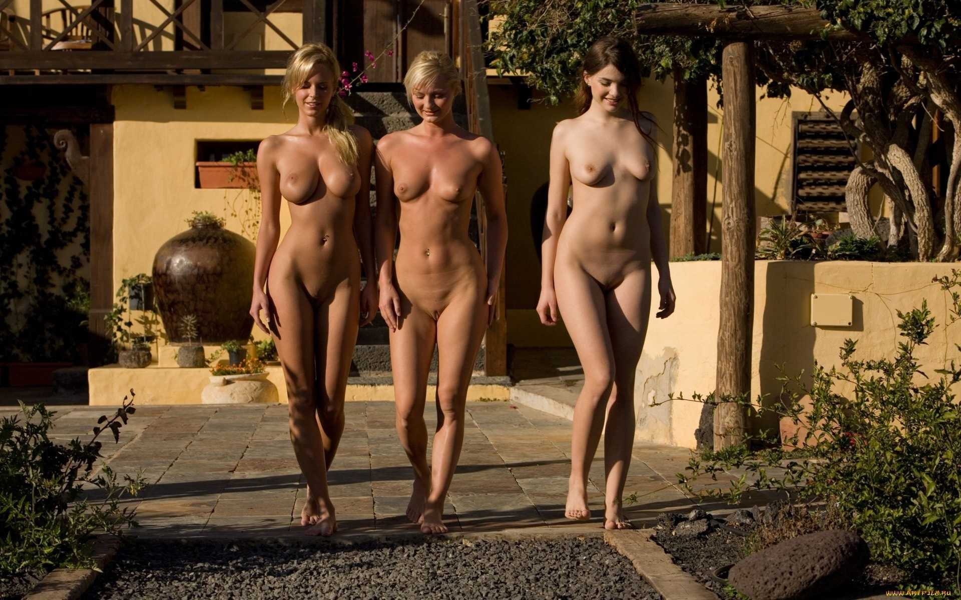 Beauty nudist share bbs — photo 14