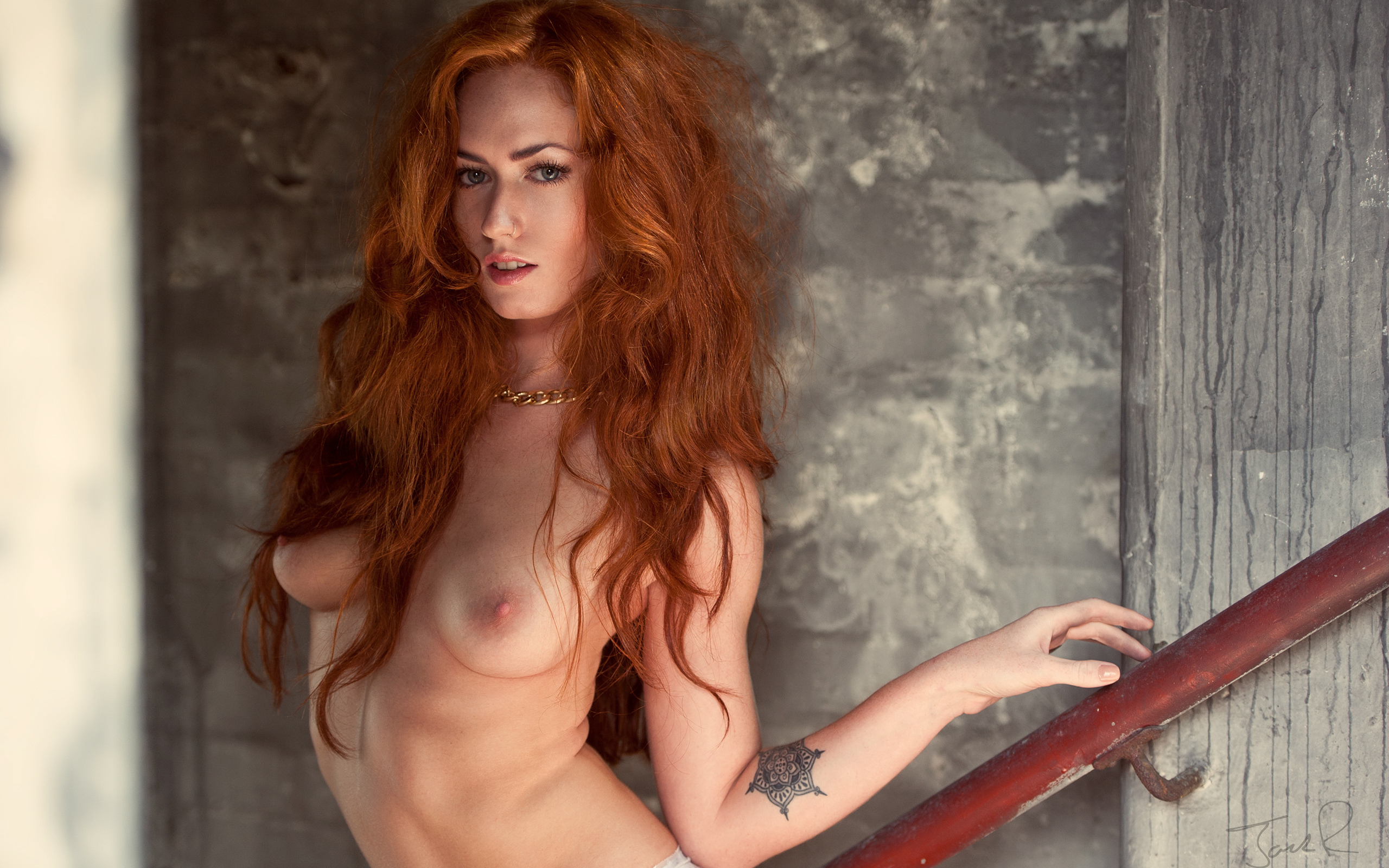Naked sexy redhead girls and women — pic 14