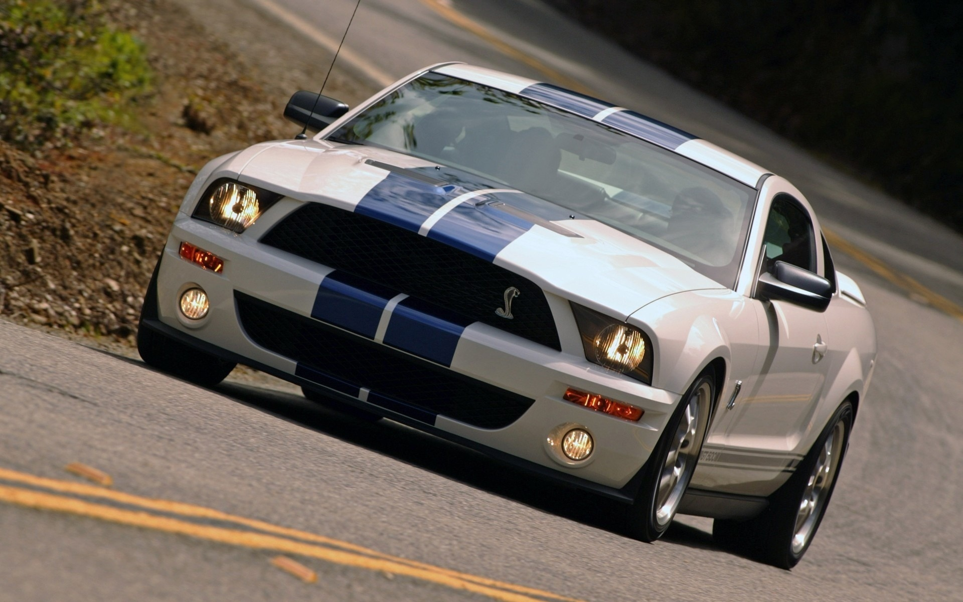 2007 shelby gt500 photos Darkwing Duck Episode Guide - m